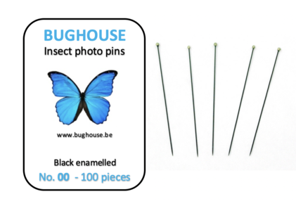 Size 00 Black Enameled 100 pc Insect Pins