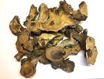 Decoration wood for insect diorama or art work (p.piece)