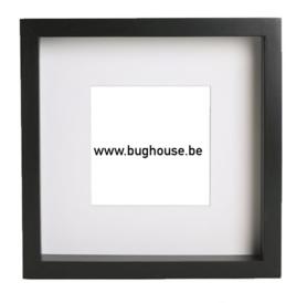 Empty frame 25x25cm color black (shadow box)