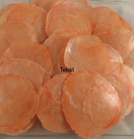 Capiz dia shells Orange (10-15 pieces)