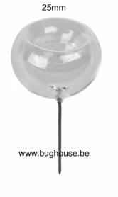 Glass Fumigant for liquid or Camphor 25 mm