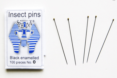 Insect pins (100 pieces) black rust proof steel size nr 0