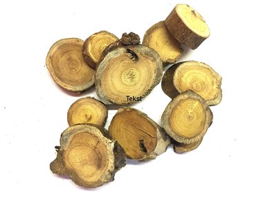 Wooden slices for insect diorama or art work (p.piece)