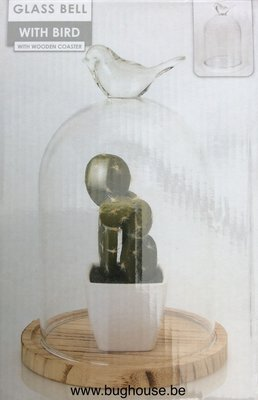 Glass dome with bird on top (Naturel) H:21cm Diam:14cm