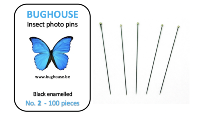 BUGHOUSE Insect Photo pins NR2 (100 pieces) black rust proof steel