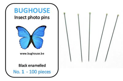 BUGHOUSE Insect Photo pins NR-1 (100 pieces) black rust proof steel