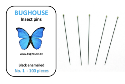 BUGHOUSE Insect pins NR-1 (100 pieces) black rust proof steel