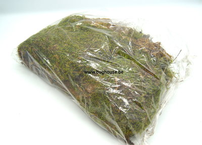 Real dried green moss 150gr