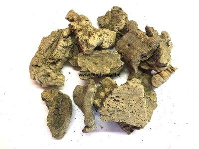 Natural cork pieces