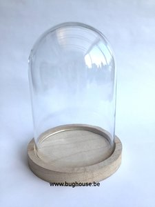 "Glass dome ""Mediuml"" (Naturel Base) H:16cm Diam:13cm"