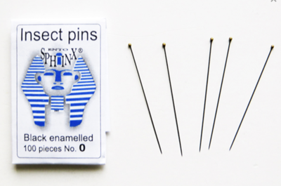 Insect pinning needles (100 pieces) black rust-proof steel size #0