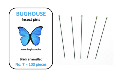 BUGHOUSE Insect pins NR-7 (100 pieces) black rust proof steel