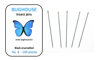 BUGHOUSE Insect pins NR-2 (100 pieces) black rust proof steel
